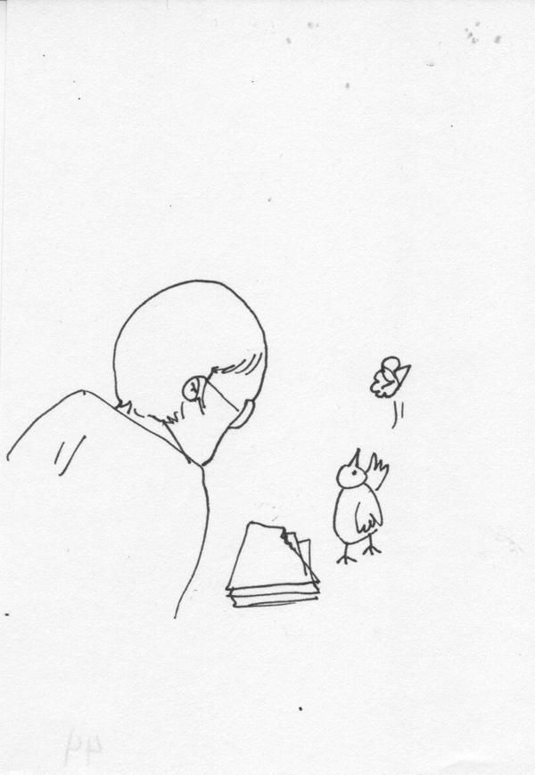 bird-critic