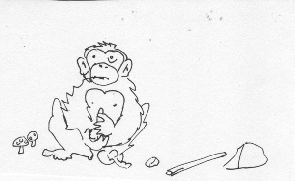 stoned-ape-theory