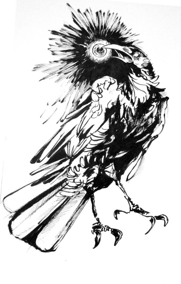 crowwithaneye