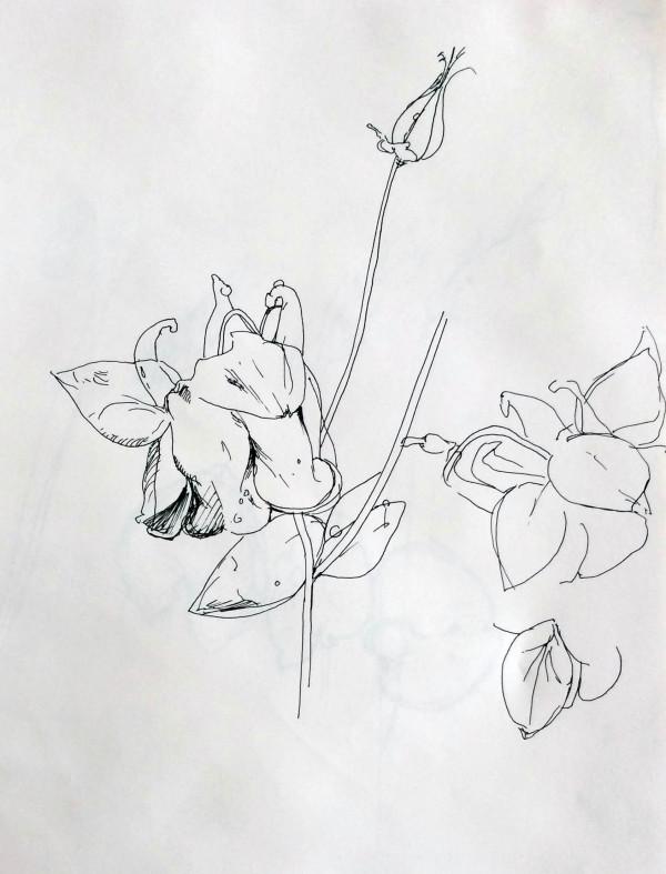 flora4